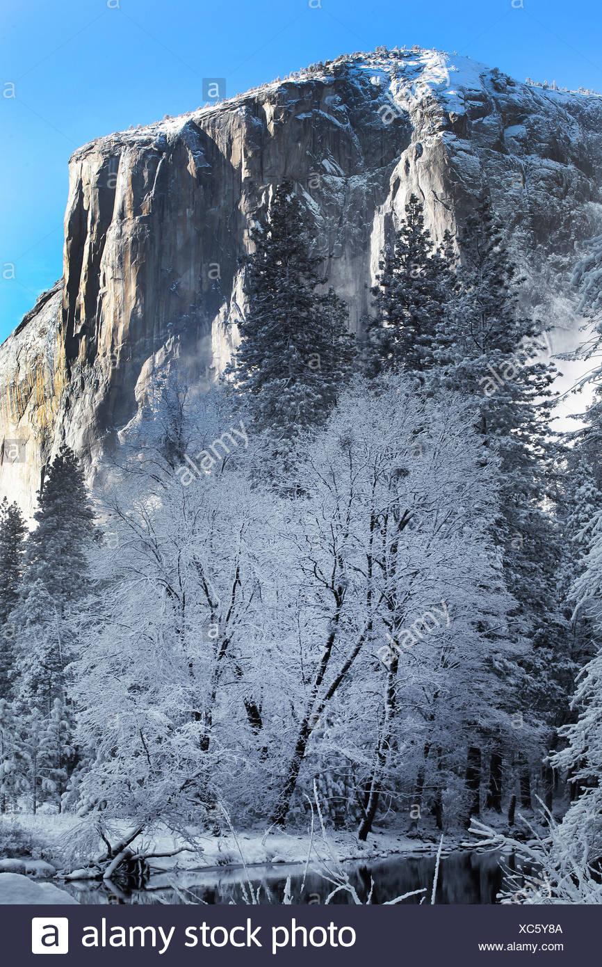 USA, United States, America, Yosemite, Valley, California, Trees, river, Rocks, winter, landscape Stock Photo