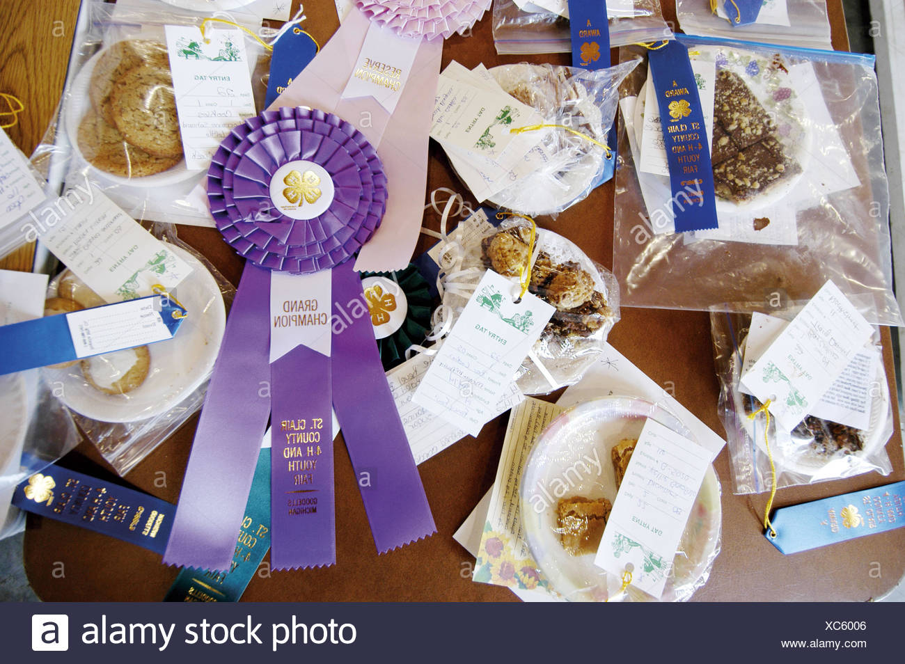 Grand prize ribbons are the rewards at St  Clair County fair