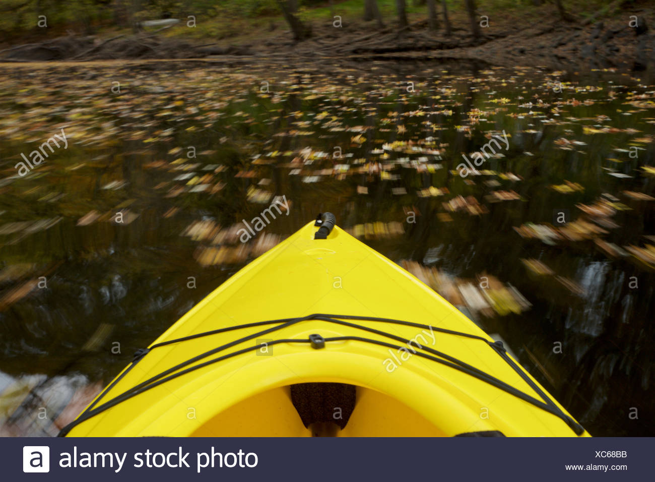 The front of a moving kayak in the Assabet River. - Stock Image