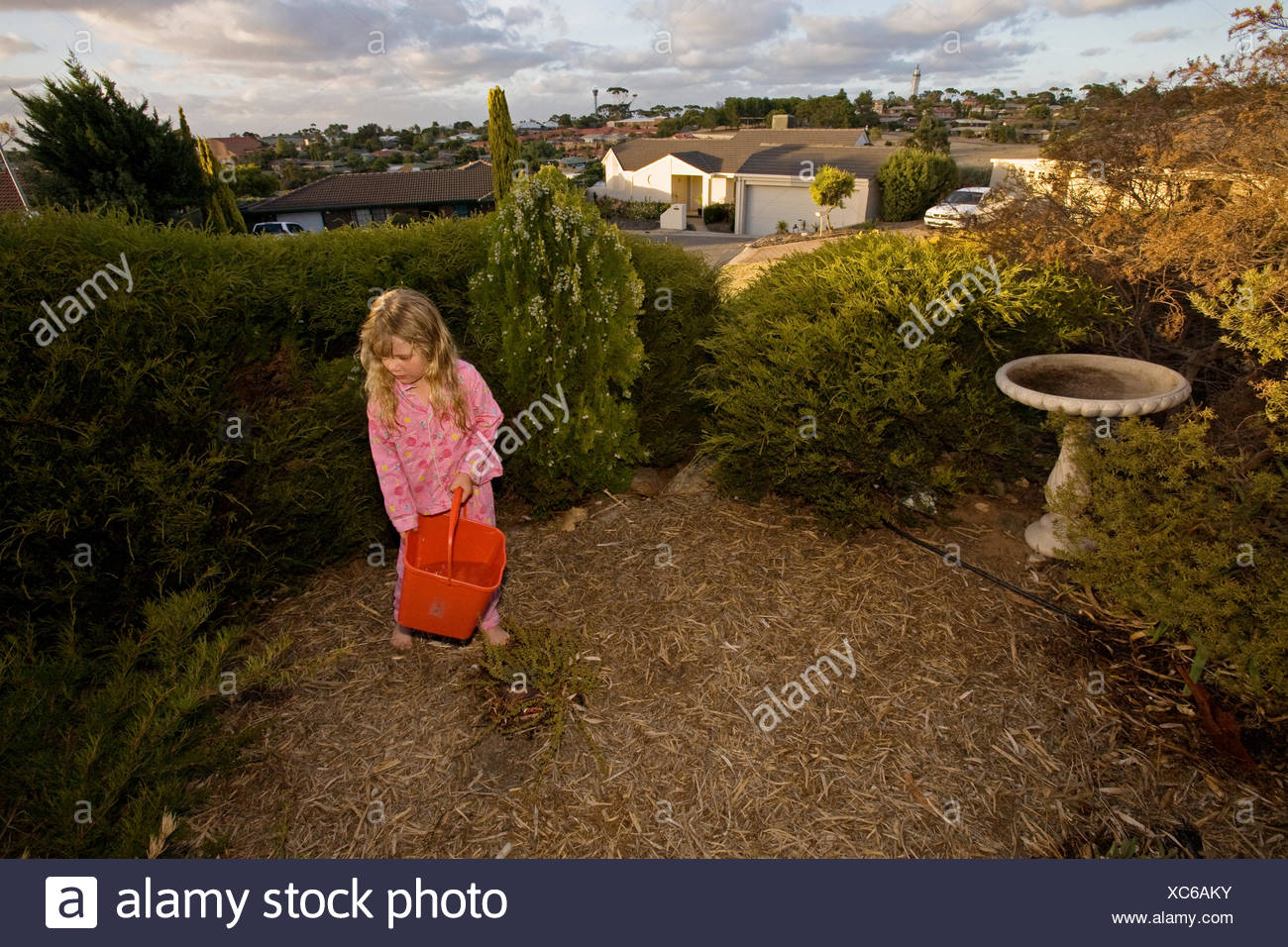 To conserve water during a drought, a girl re-uses bath water for the garden. - Stock Image