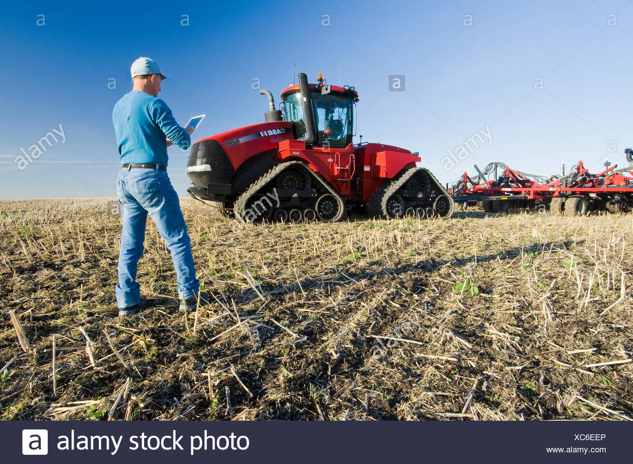 farmer using a tablet in front of a tractor and air seeder planting winter wheat in a zero till field containing canola stubble, near Lorette, Manitoba, Canada - Stock Image