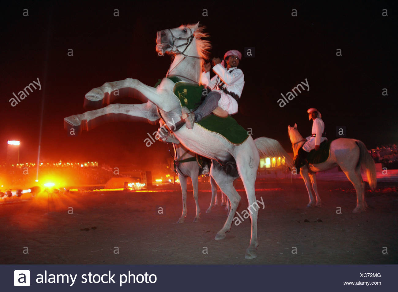A rider in traditional Arab clothing on a rearing horse, Dubai, UAE - Stock Image