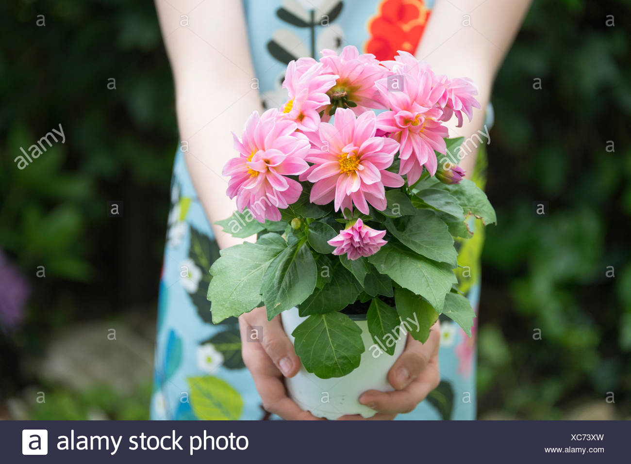 Girl gardening, holding pot with flowers - Stock Image