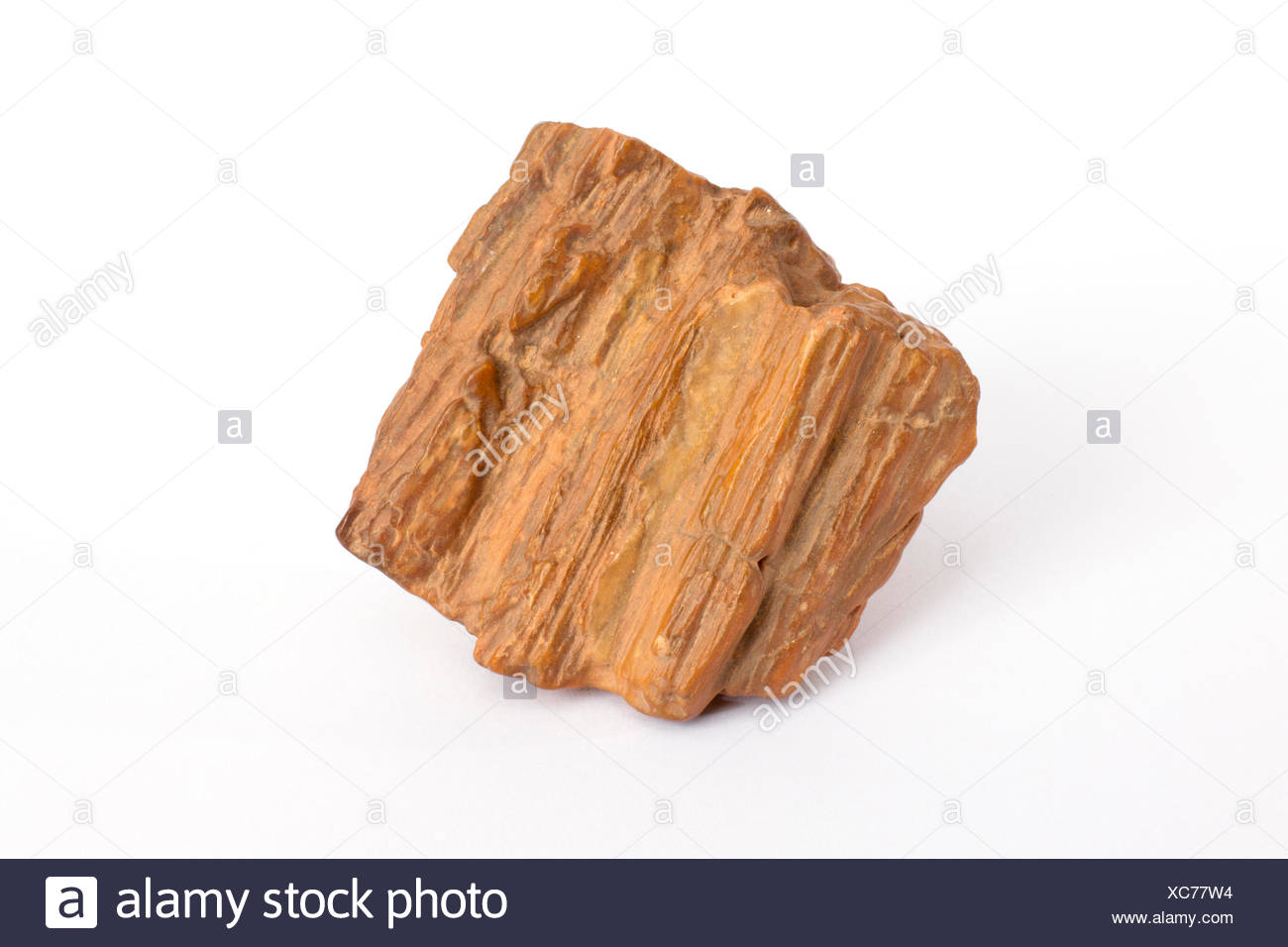 silicified piece of wood polished by wind, Morocco - Stock Image