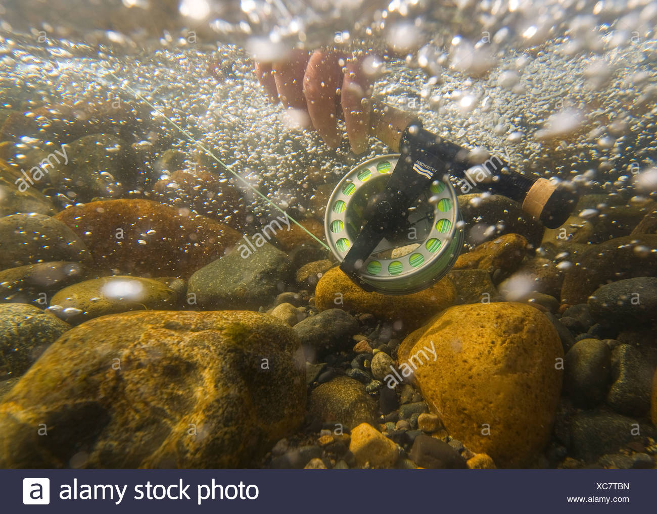 Underwater view of a fly rod and reel in the fast moving water of Montana Creek, Alaska - Stock Image