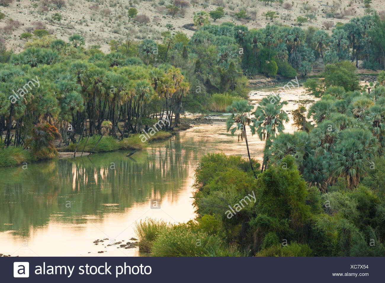 Kunene border river between Namibia and Angola, in the morning light, Kunene Region, Namibia - Stock Image