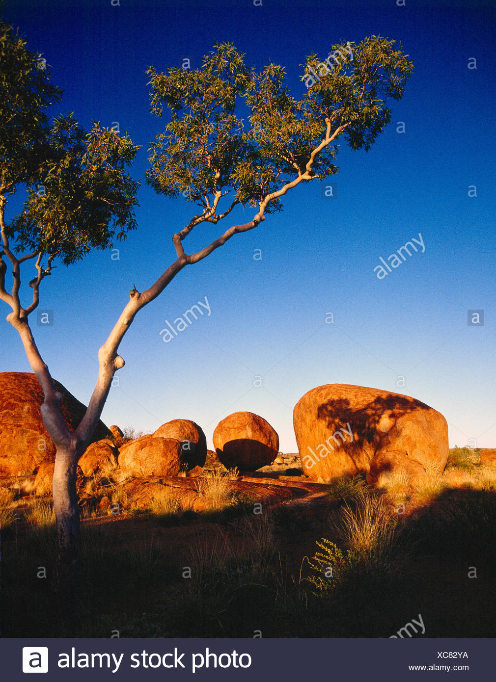 Australia. Northern Territory. Tennant Creek. Devils Marbles rock formations. - Stock Image