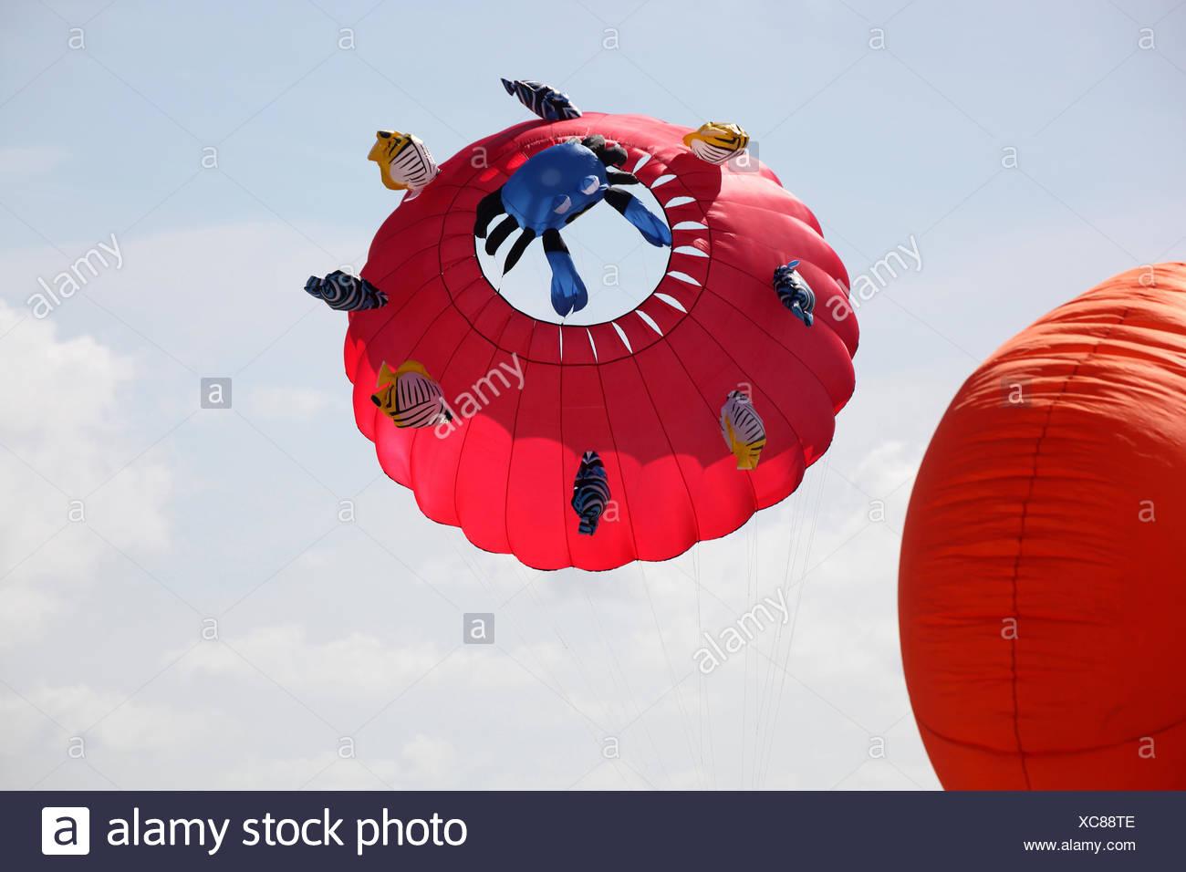 kite on the beach - Stock Image