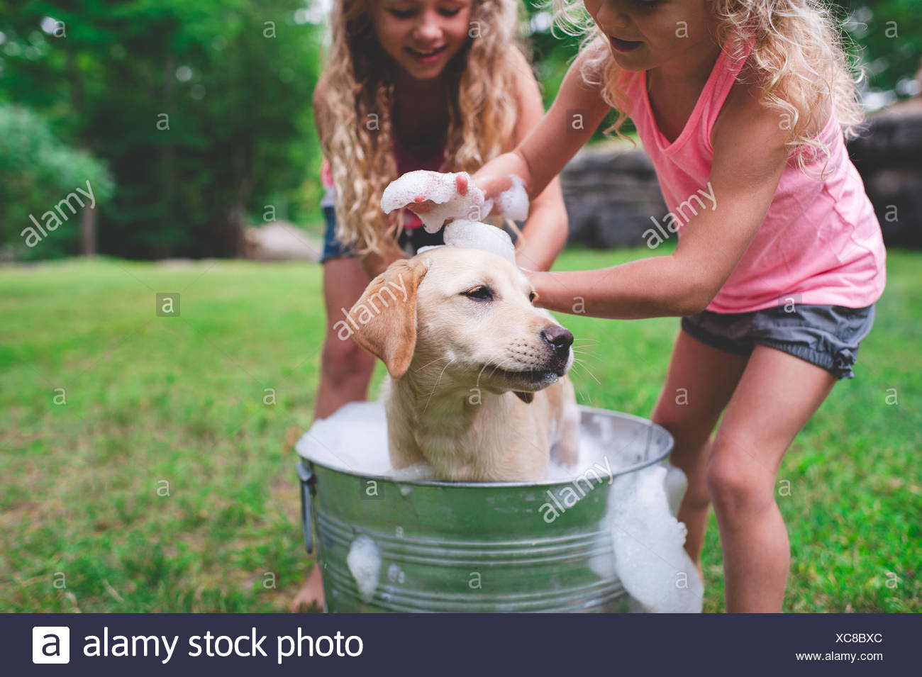 Two sisters bathing pet Labrador Retriever puppy - Stock Image