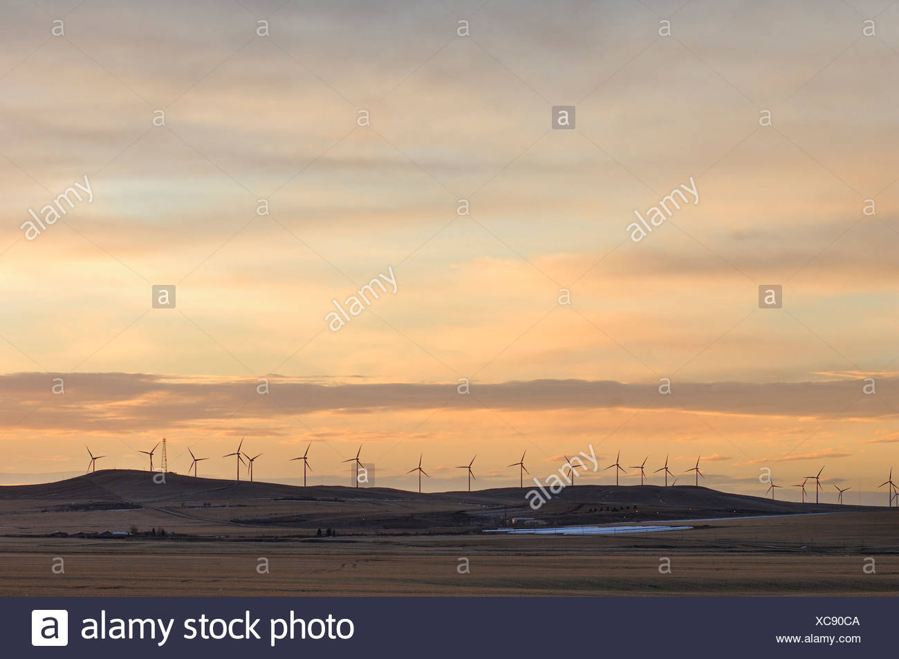 Canada Pincher Creek Alberta Wind Power Turbines Winter Wind Power Windmill Farm Generator Industry Energy Plant Landscape Dusk - Stock Image