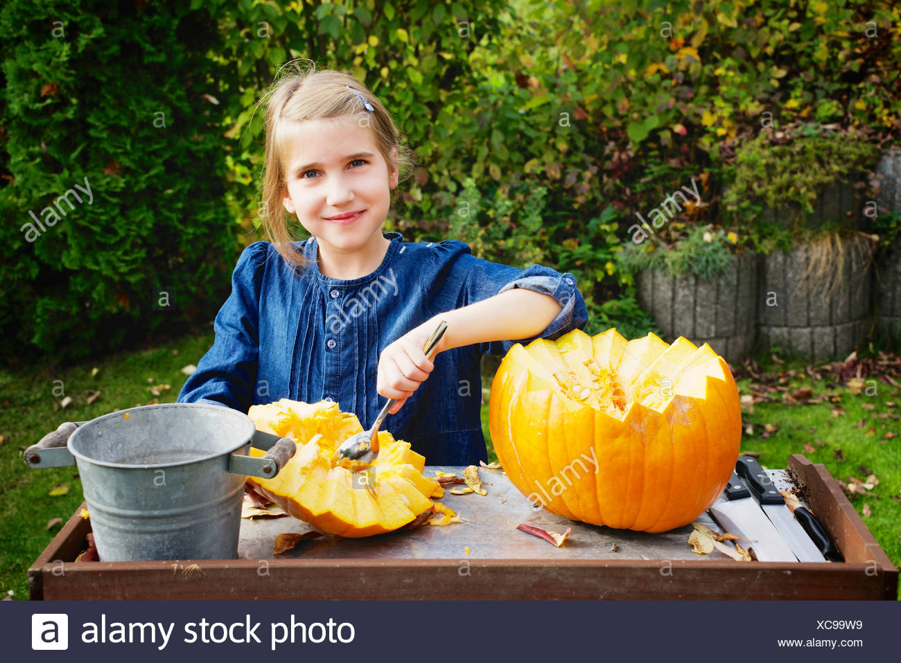 Girl carving Jack O'Lantern - Stock Image