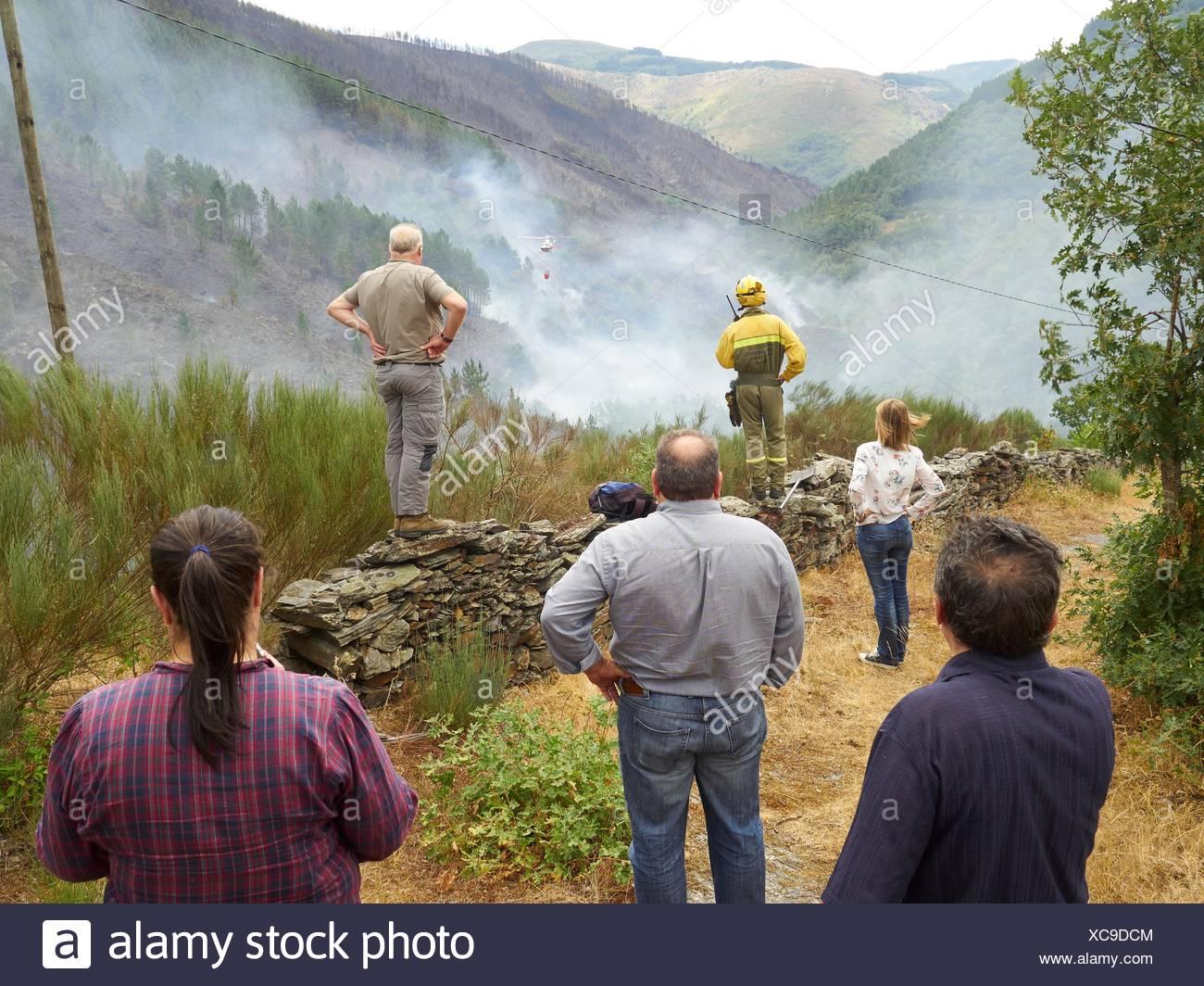 Forest fire in Navia de Suarna, Lugo, Galicia, Spain (26/07/2015) Stock Photo