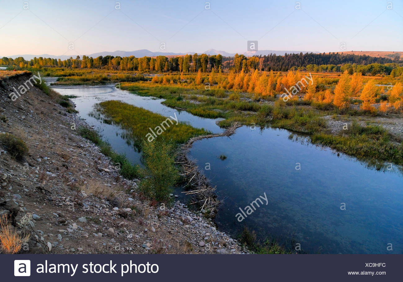 Skhodnya - a river in Russia (Moscow region). Description, features, photo
