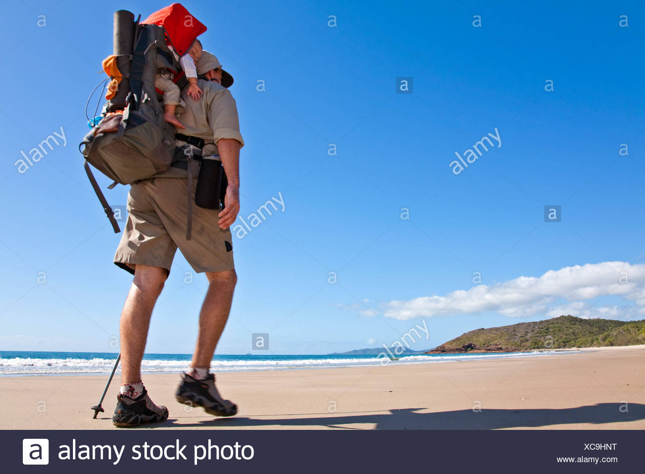 A man hikes while carrying his baby in Zoe Bay, Hinchinbrook Island, Queensland, Australia. Stock Photo
