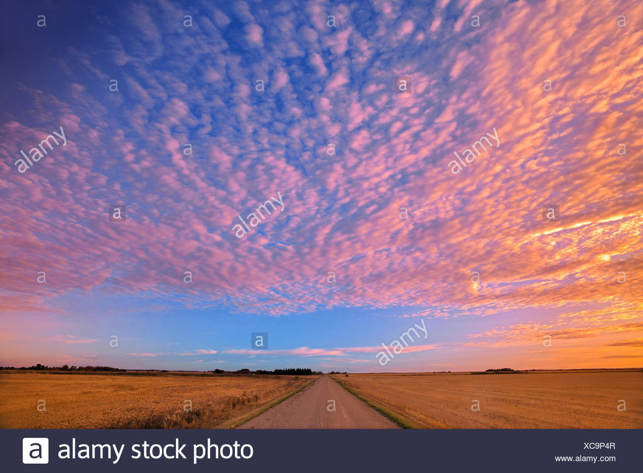 Clouds at sunrise Lepine Saskatchewan Canada - Stock Image