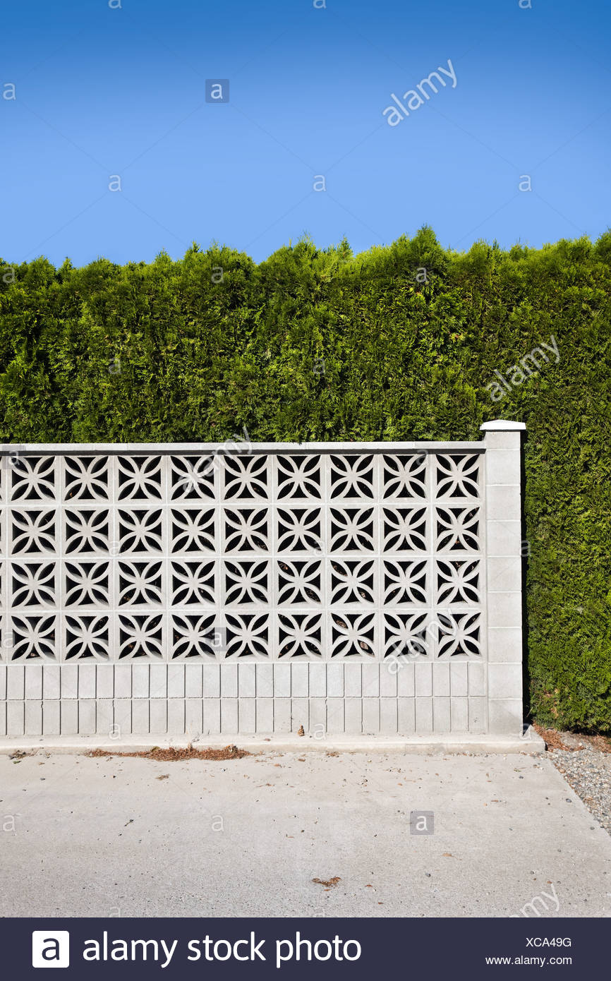 Wall and hedge - Stock Image