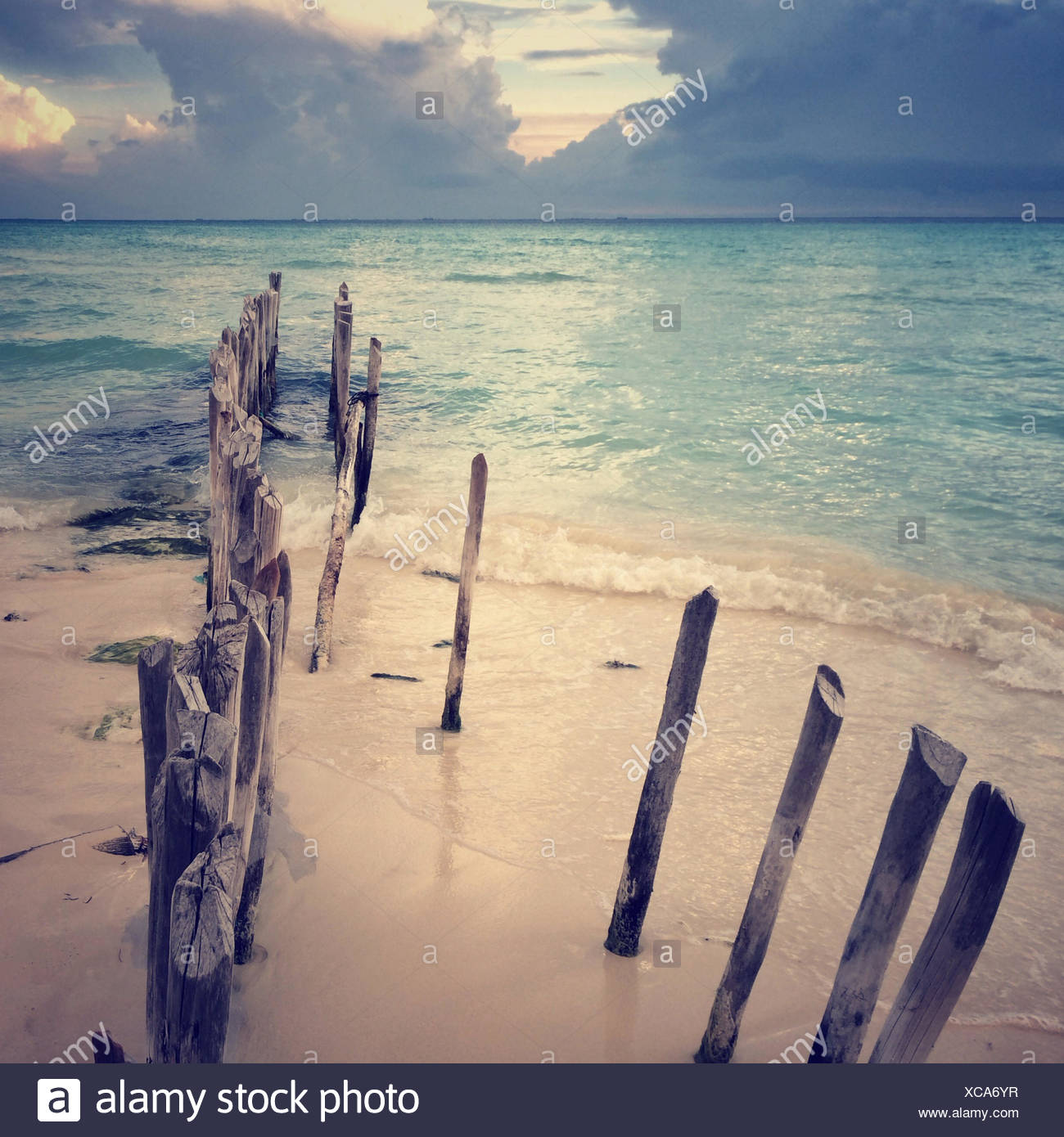 Mexico, View of wooden post on beach - Stock Image
