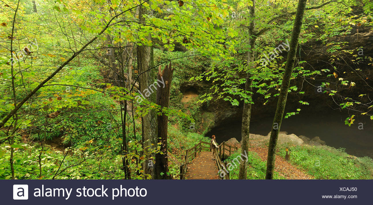 Person woman standing viewing platform stairway Maquoketa Caves State Park Iowa USA wood nature green autumn America North - Stock Image