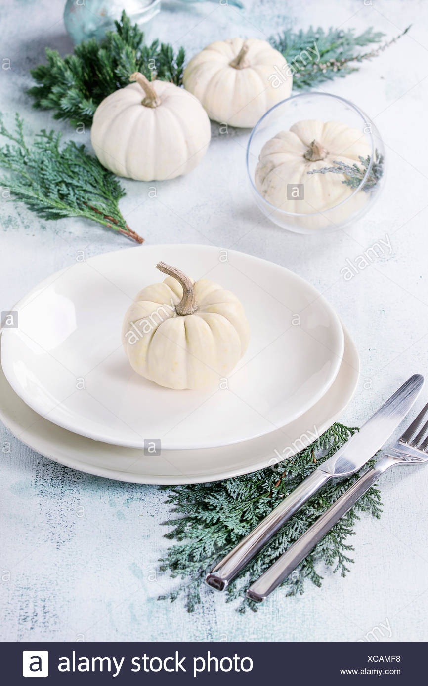 Holiday table setting decoration with white decorative pumpkins, thuja branches and dinner plates over white wooden background. - Stock Image