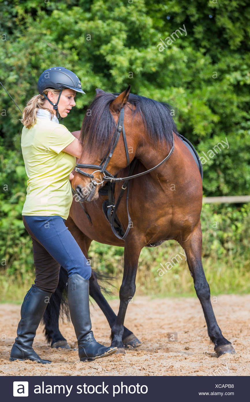 Aegidienberger Woman exercising bay mare - Stock Image