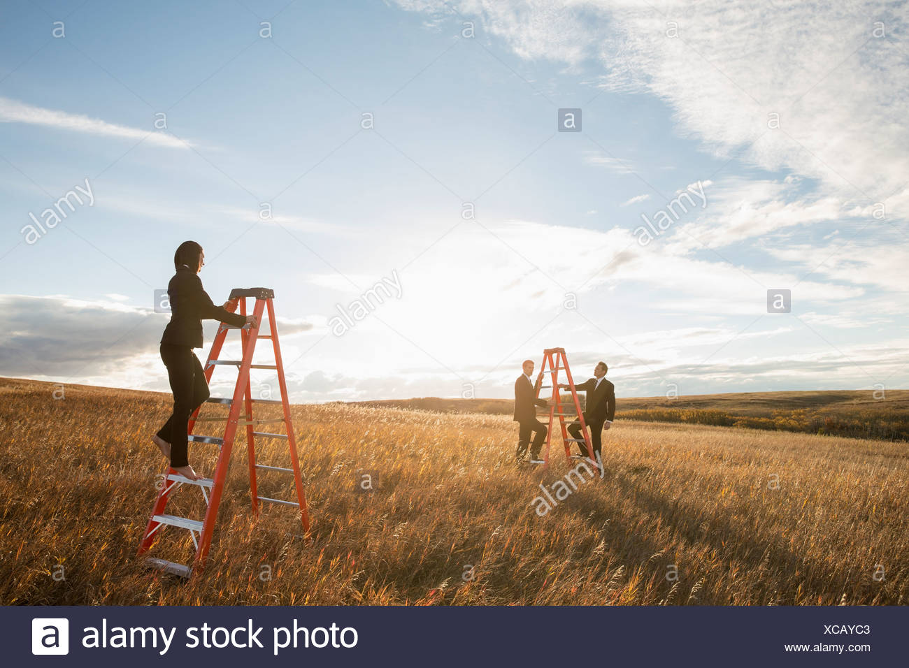 Confident business people climbing ladders on field - Stock Image