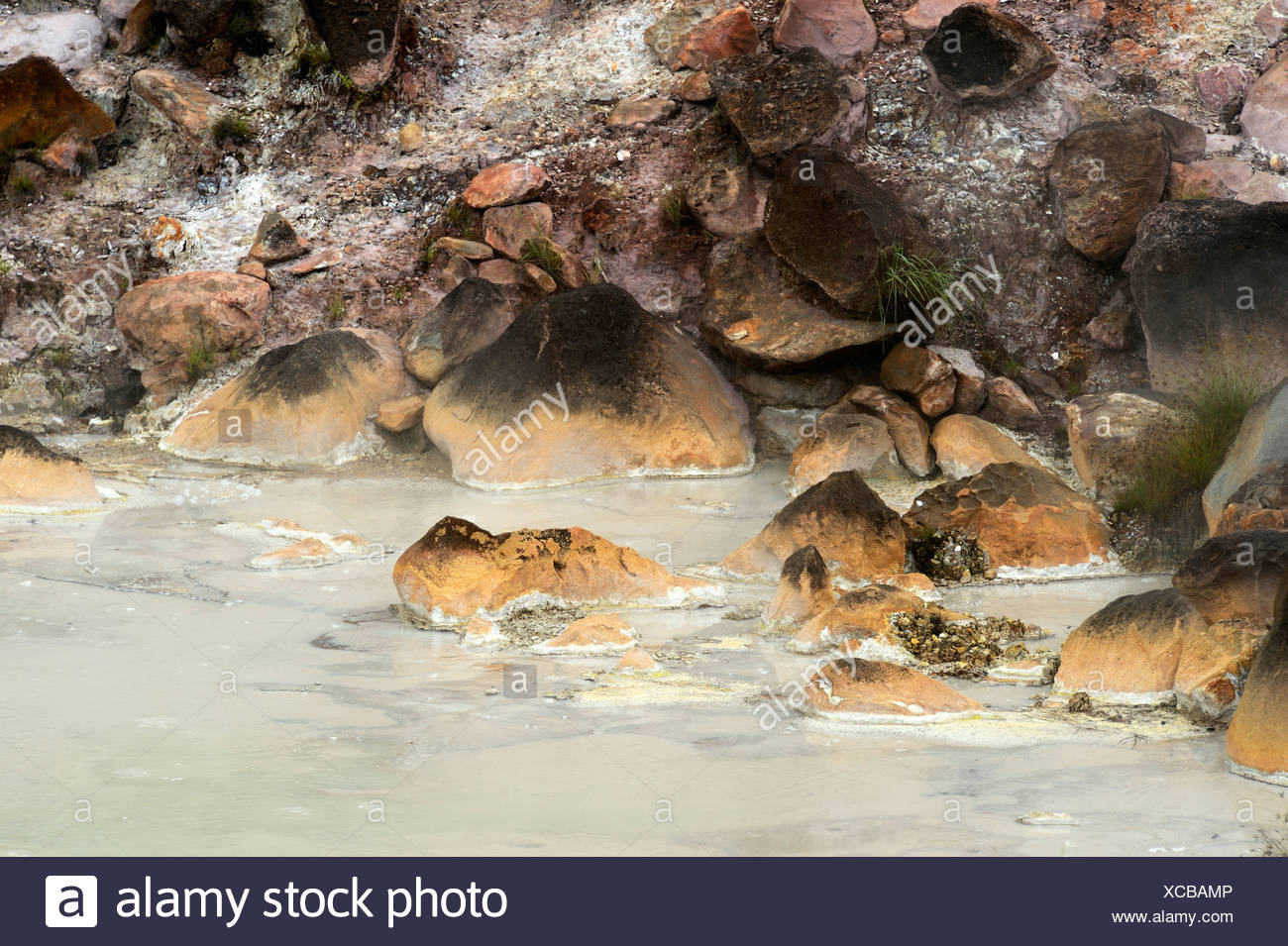 Hot mud springs, Rincon de la Vieja National Park, Guanacaste, Costa Rica, South America - Stock Image