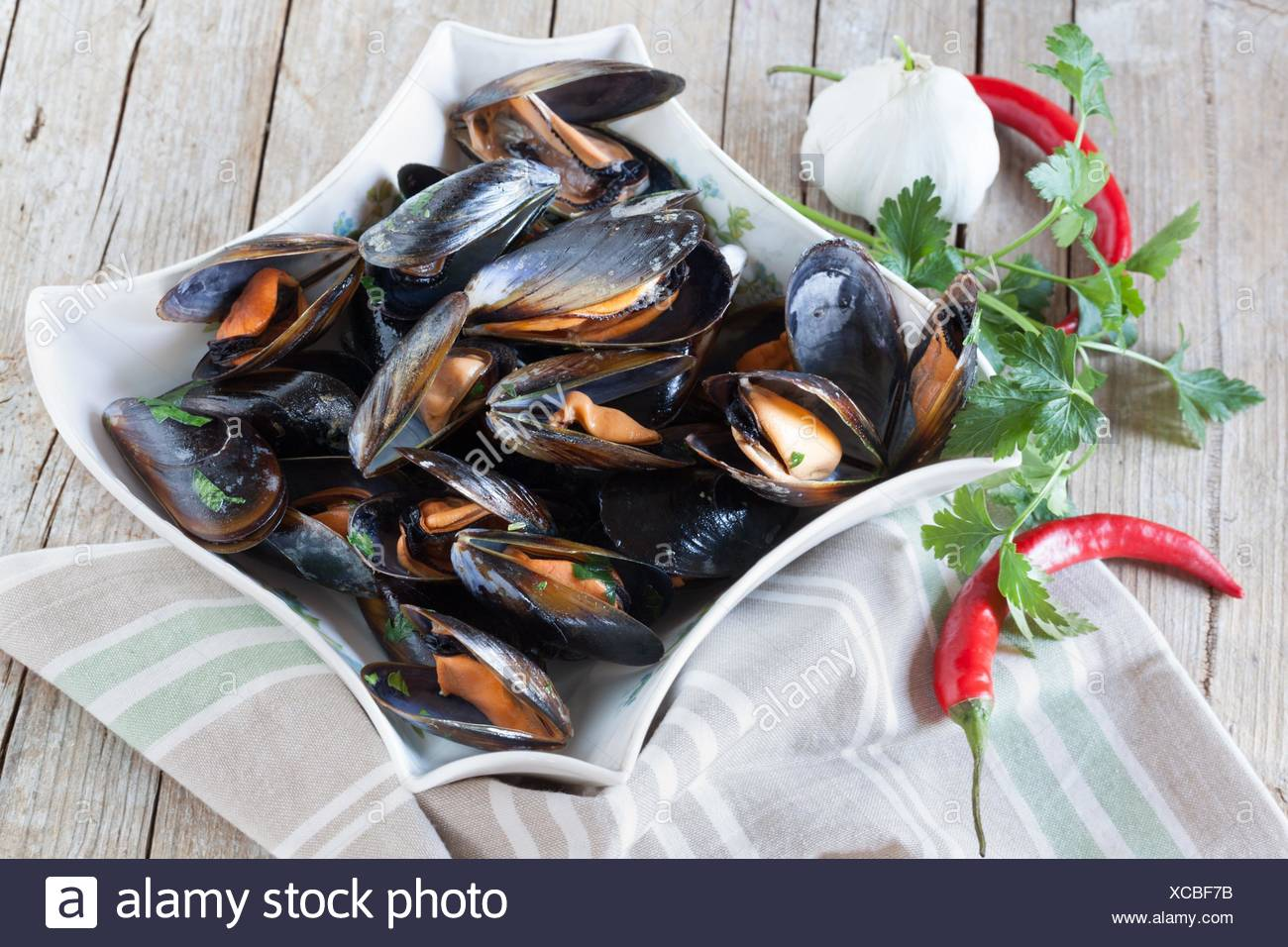 Plate with sauteed mussels decorated with fresh parsley, garlic and red chili pepper. - Stock Image