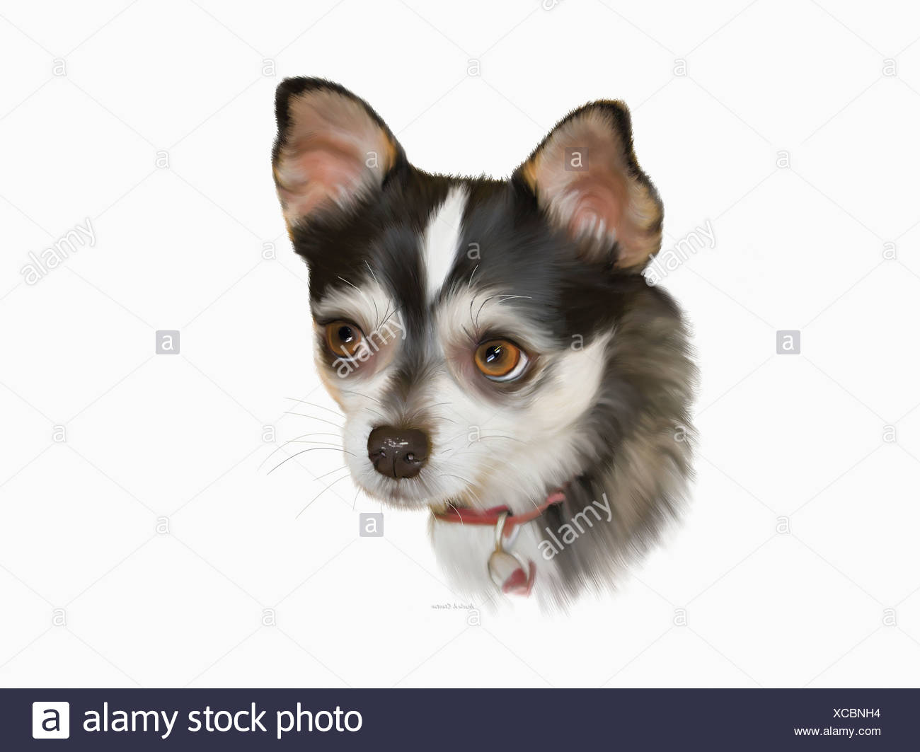 Computer Generated Portrait Of A Dog - Stock Image