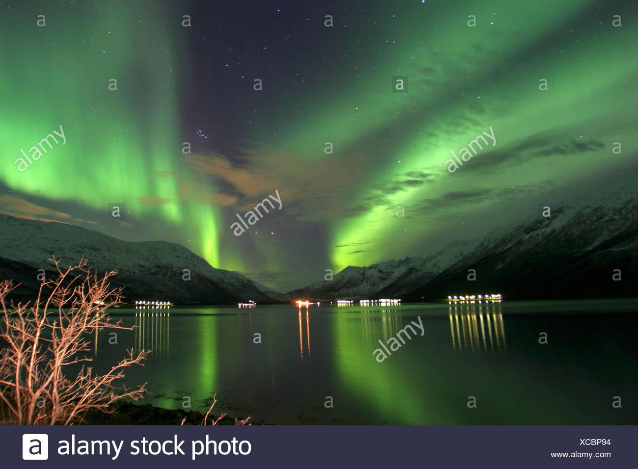 northern light over Kvalya, Norway, Troms, Kvaloeya, Okt 03. Stock Photo