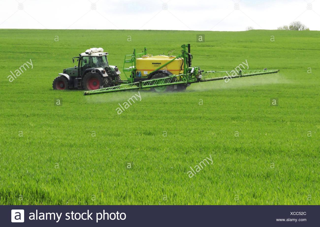 Traktor spritzt Pestizide auf ein Getreidefeld zur Unkrautvernichtung, Deutschland, Rheinland-Pfalz, Westerwald | tractor sprayi - Stock Image