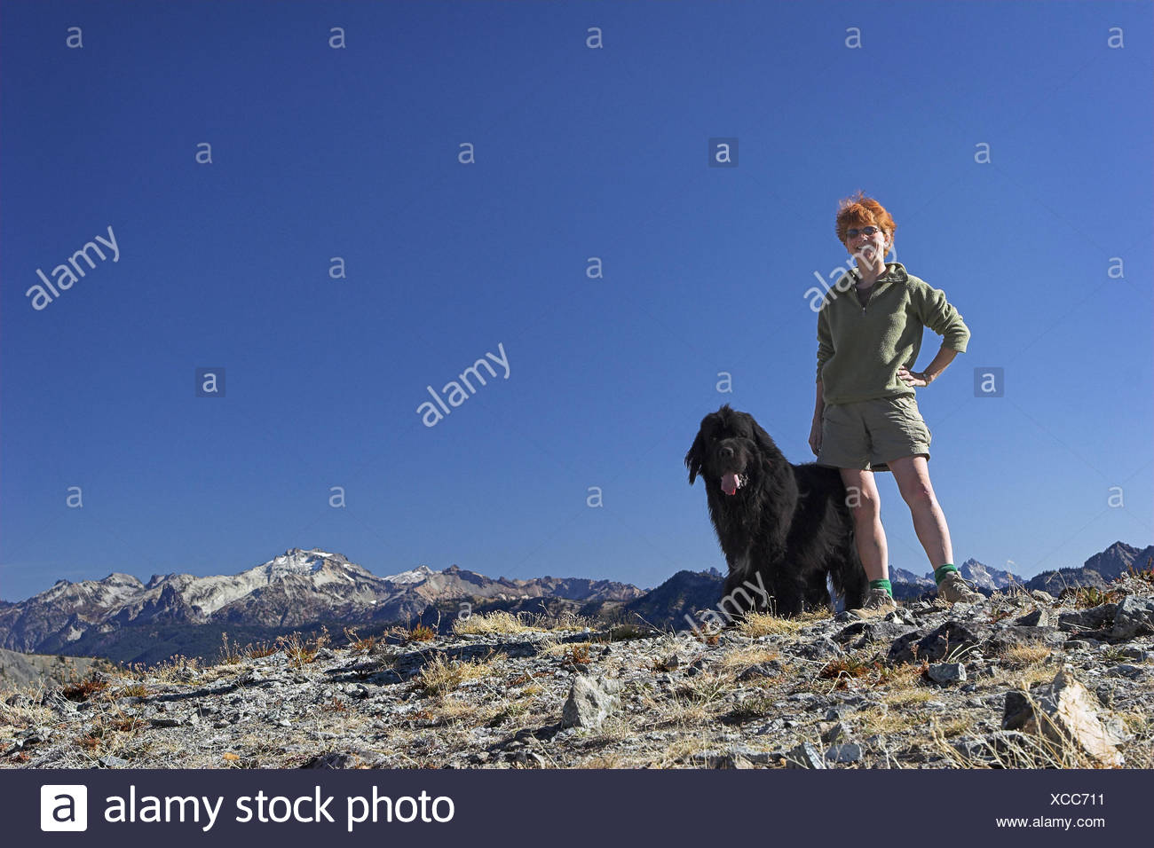 Woman hiker and newfoundland dog at Fortune Creek Pass in the Washington Cascades  Mount Daniel is in the background - Stock Image
