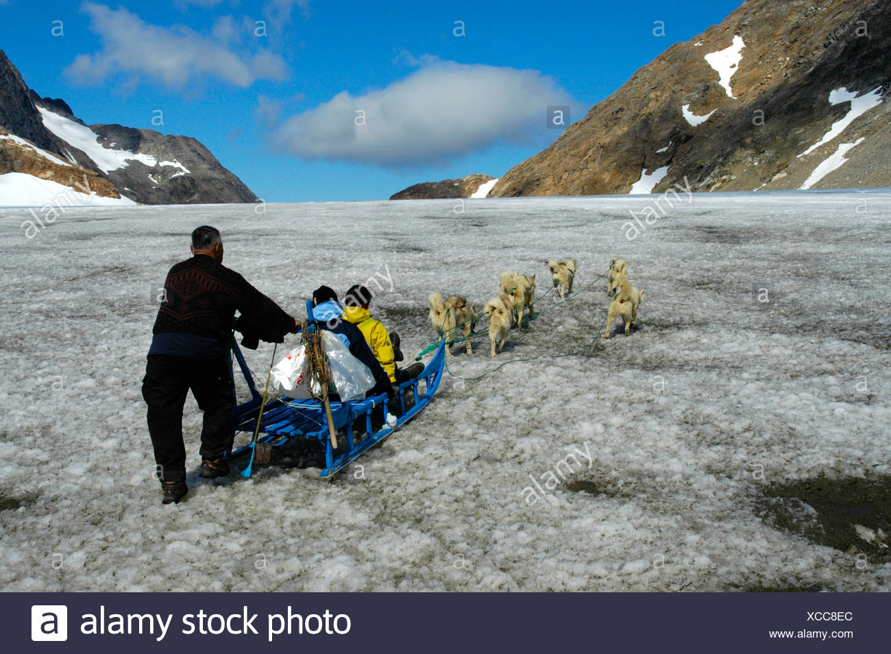 Dog-sledge with Husky dogs guests and an Inuit Greenlander on glacier Apusiak Eastgreenland - Stock Image