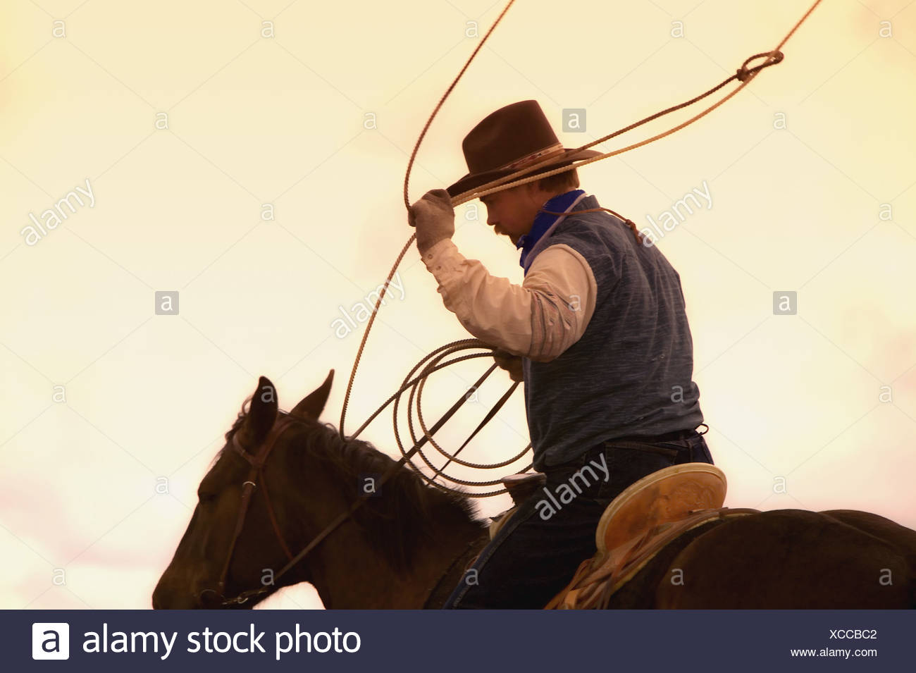 Cowboy with lasso - Stock Image