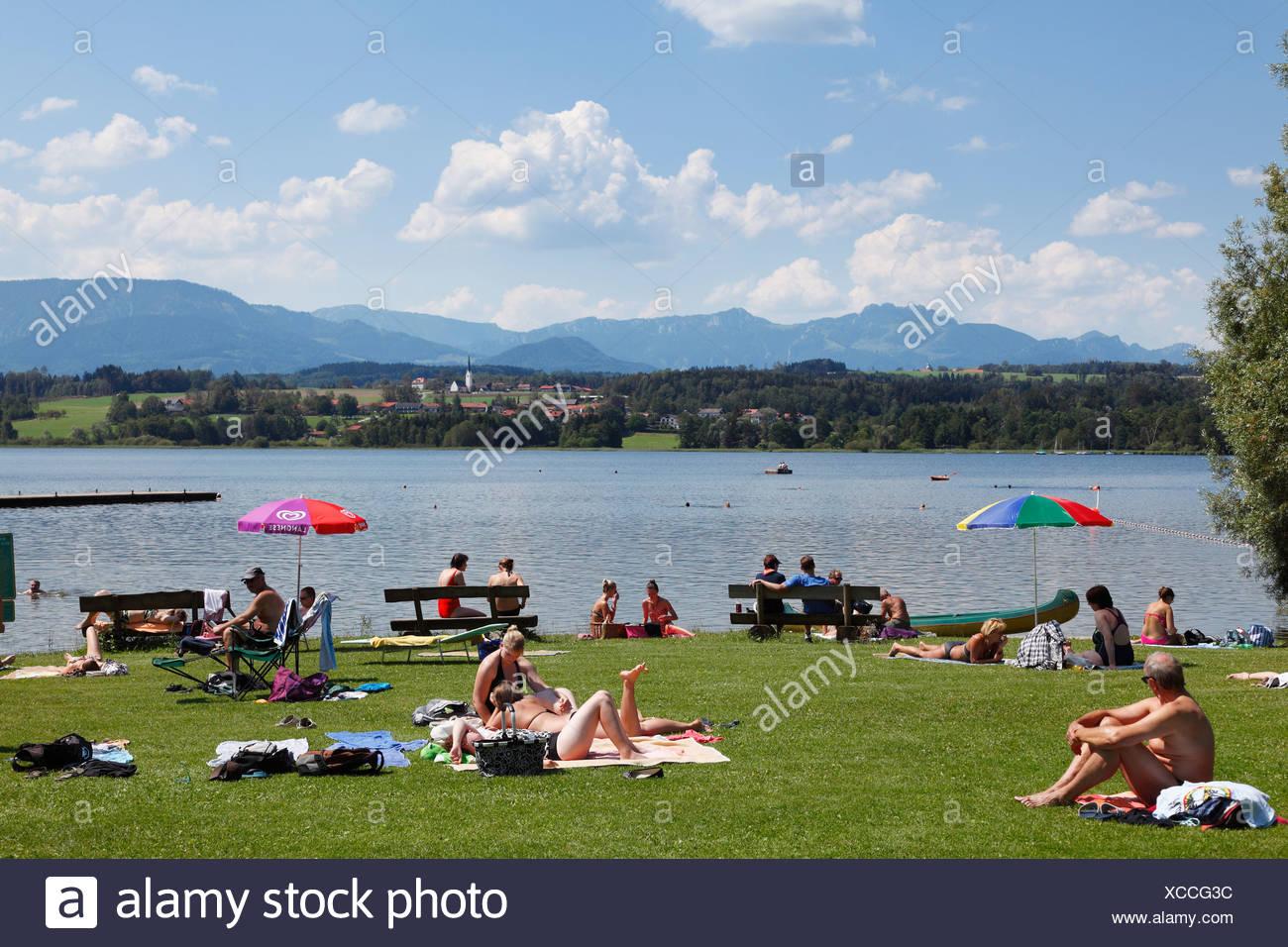 Holidaymakers sunbathing at Simssee lake near Stephanskirchen, Neukirchen at back, Chiemgau, Upper Bavaria, Bavaria - Stock Image