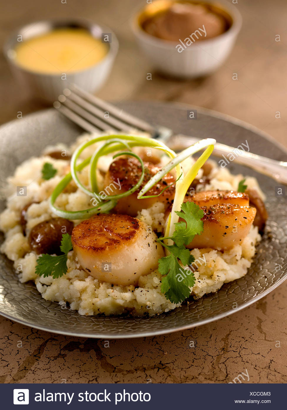 Scallops with crushed potatoes,celeriac and candied chestnuts - Stock Image