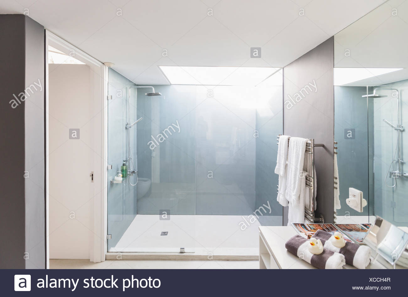Modern luxury home showcase interior bathroom with shower
