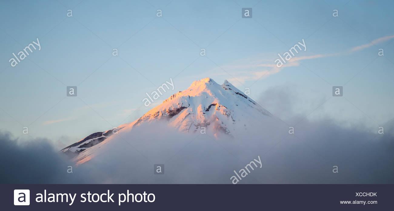 Stratovolcano Mount Taranaki or Mount Egmont at sunset, peak above the clouds, Egmont National Park, Taranaki, New Zealand - Stock Image