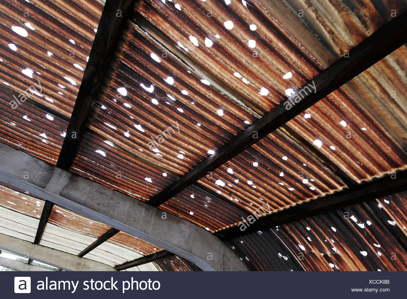 Corrugated roof made of plastic, holes caused by hail, brown colouring caused by pollution, industrial area, Rhine Harbour Kref - Stock Image