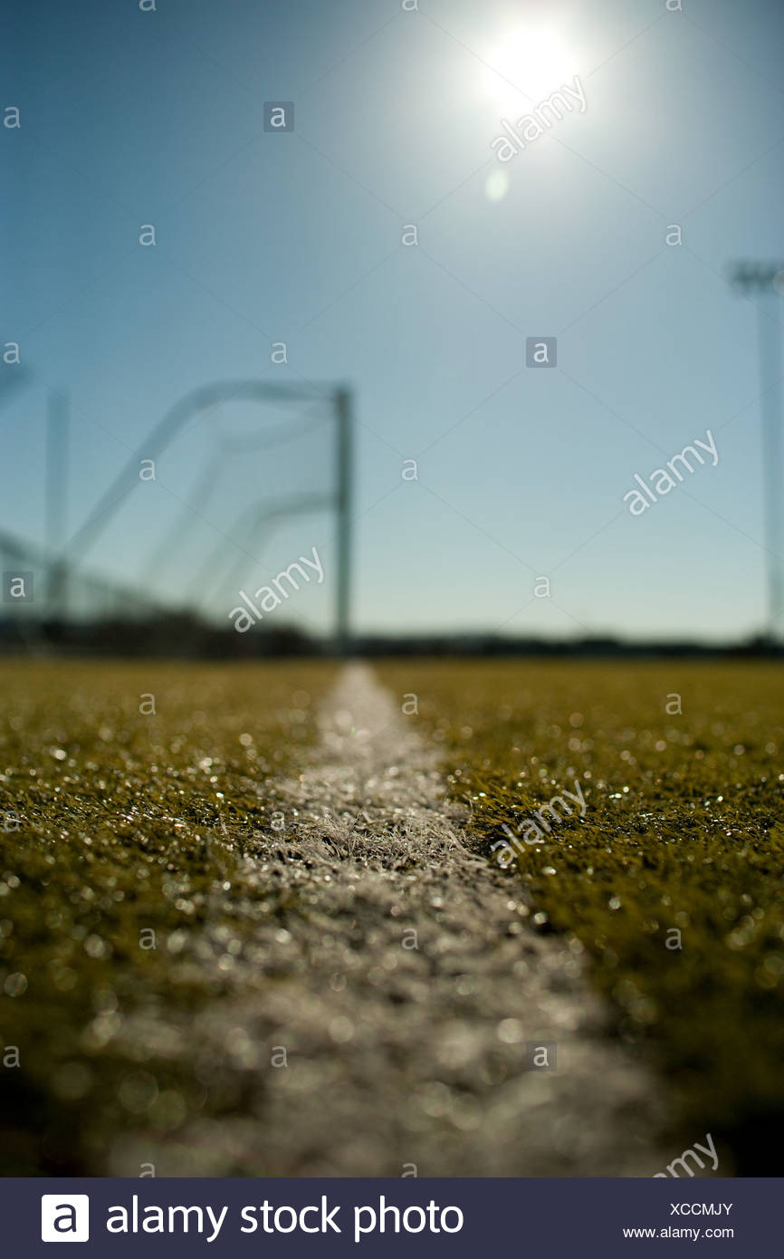 Line marking on football pitch - Stock Image