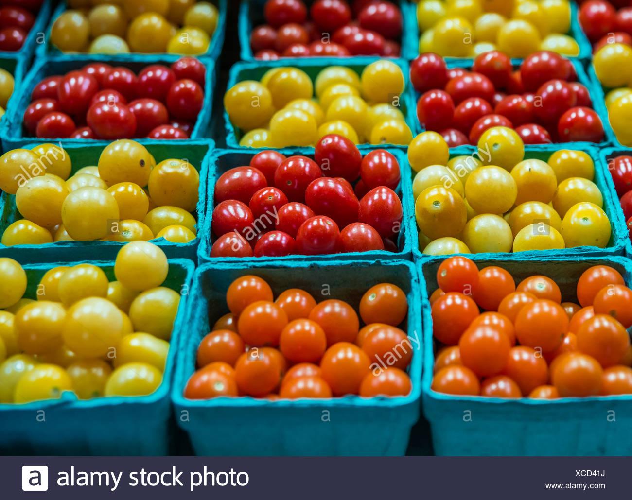 Pint cartons of fresh cherry tomato varieties at farmers market. - Stock Image