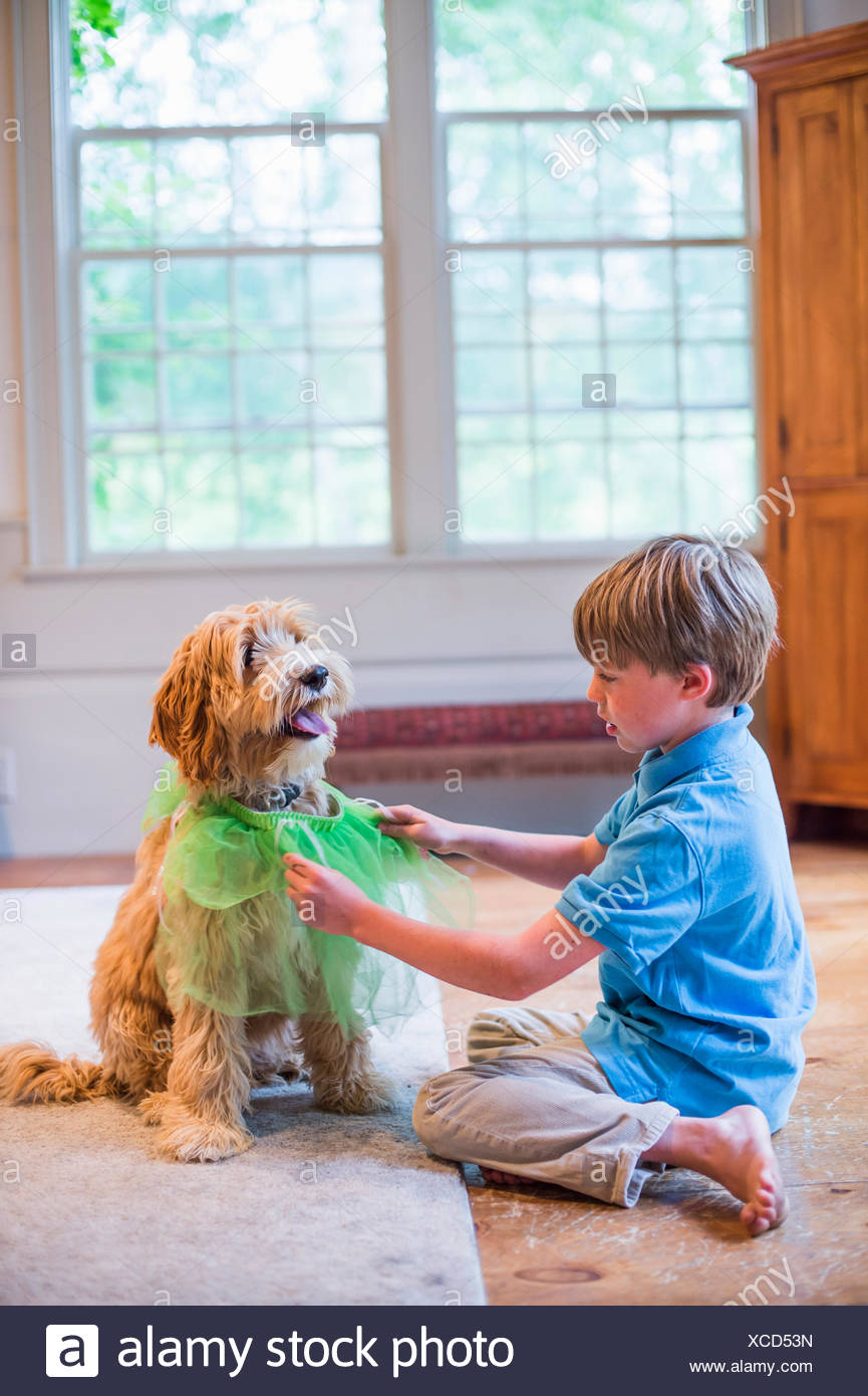 Young boy playing dress up with pet dog Stock Photo