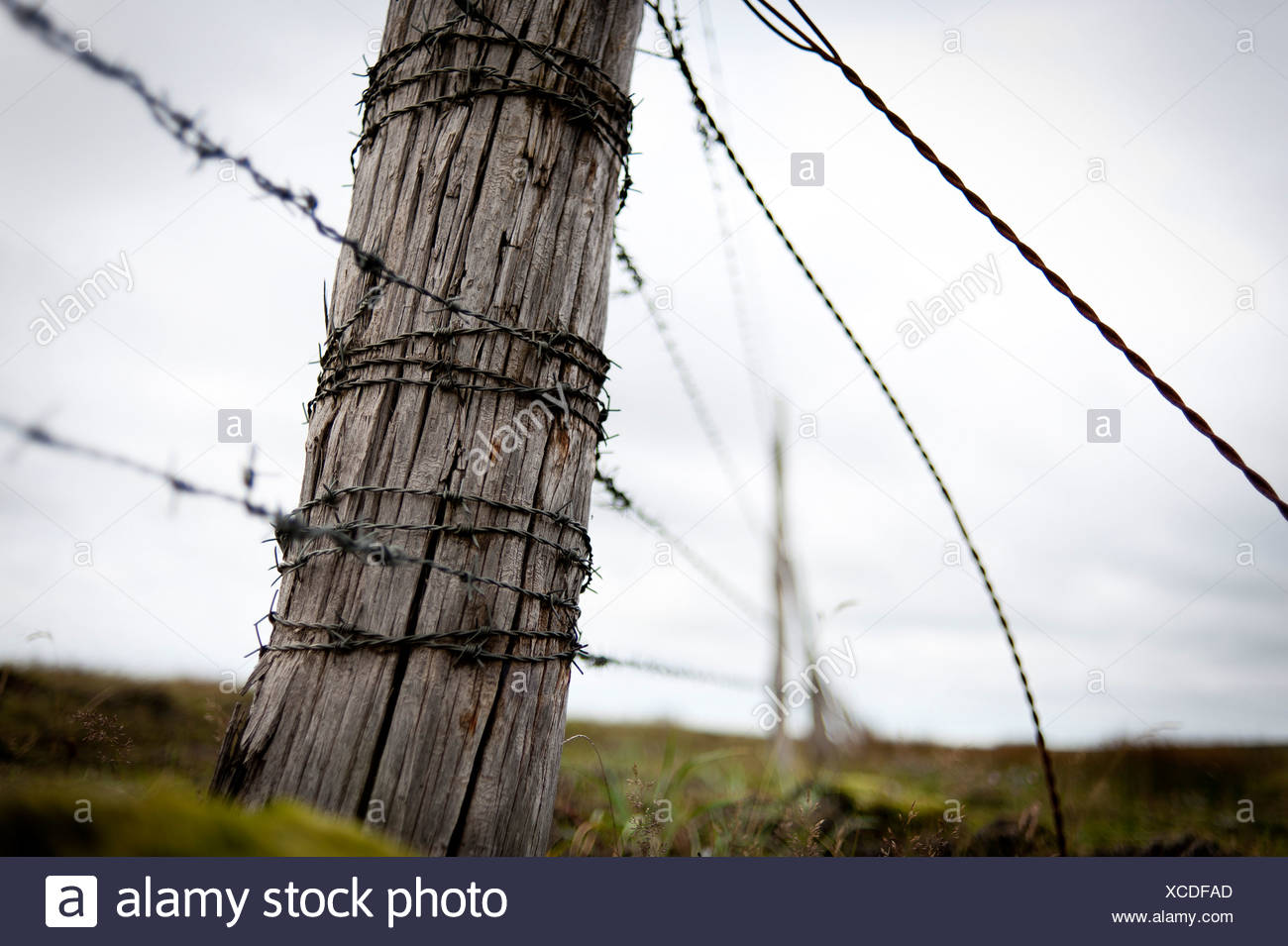 Wire Fencing Post Stock Photos & Wire Fencing Post Stock Images - Alamy