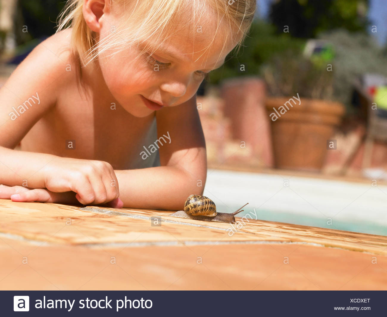 Little girl looking at a snail. Stock Photo