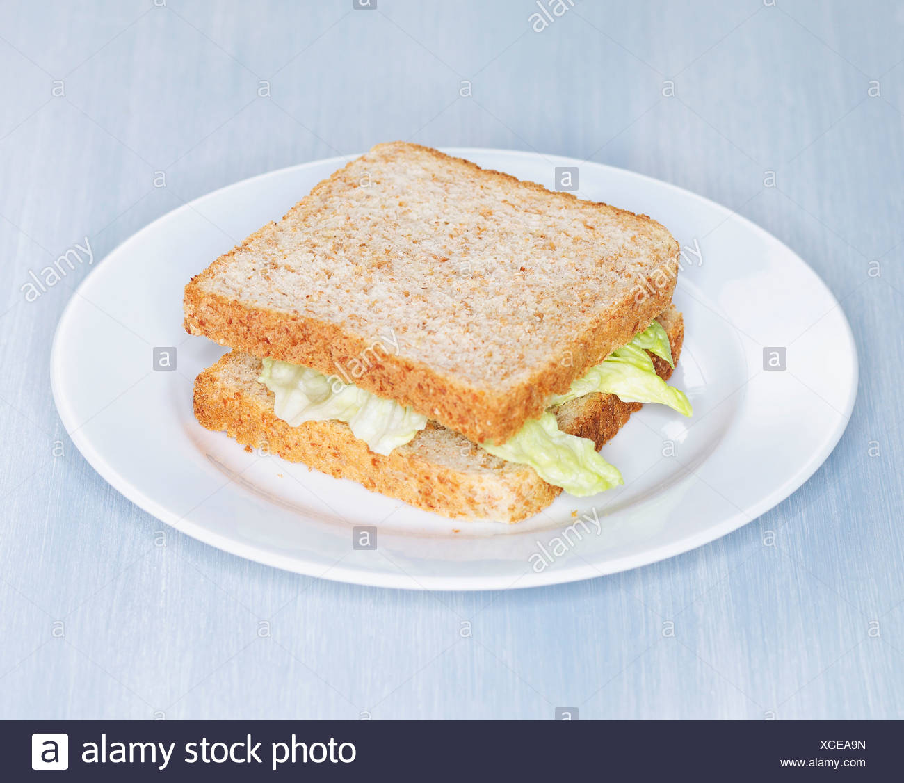 Whole meal toast sandwich with Iceberg salad on plate - Stock Image