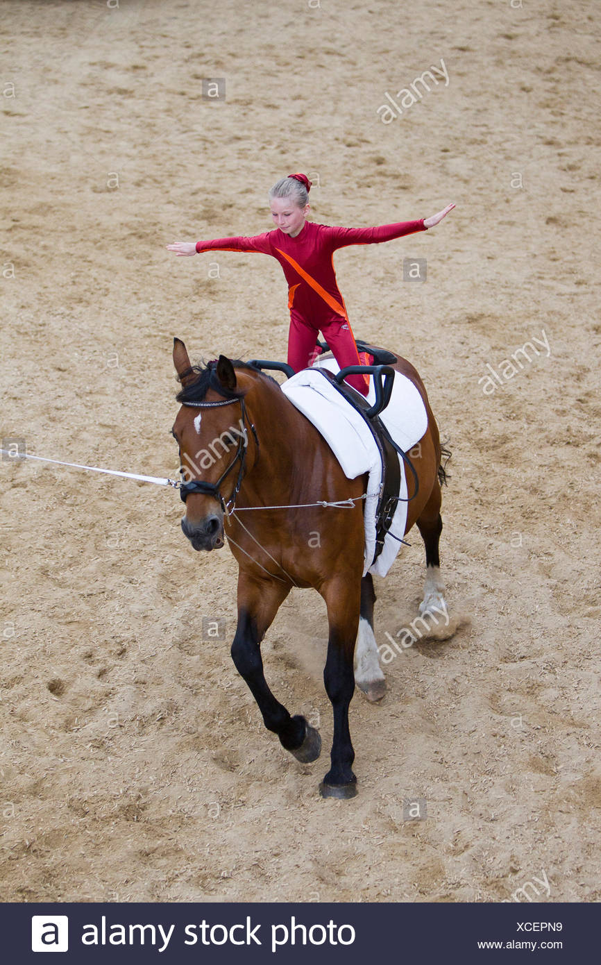 Girl vaulting bay Hanoverian mare Lower Saxony, - Stock Image