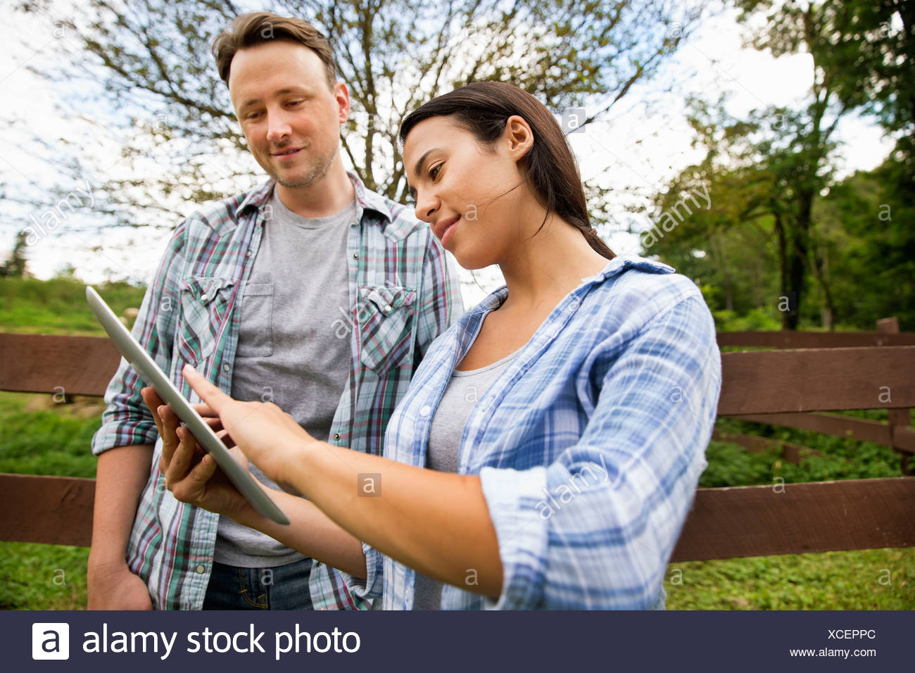 An organic farm in the Catskills. Two people looking at the screen of a digital tablet. - Stock Image