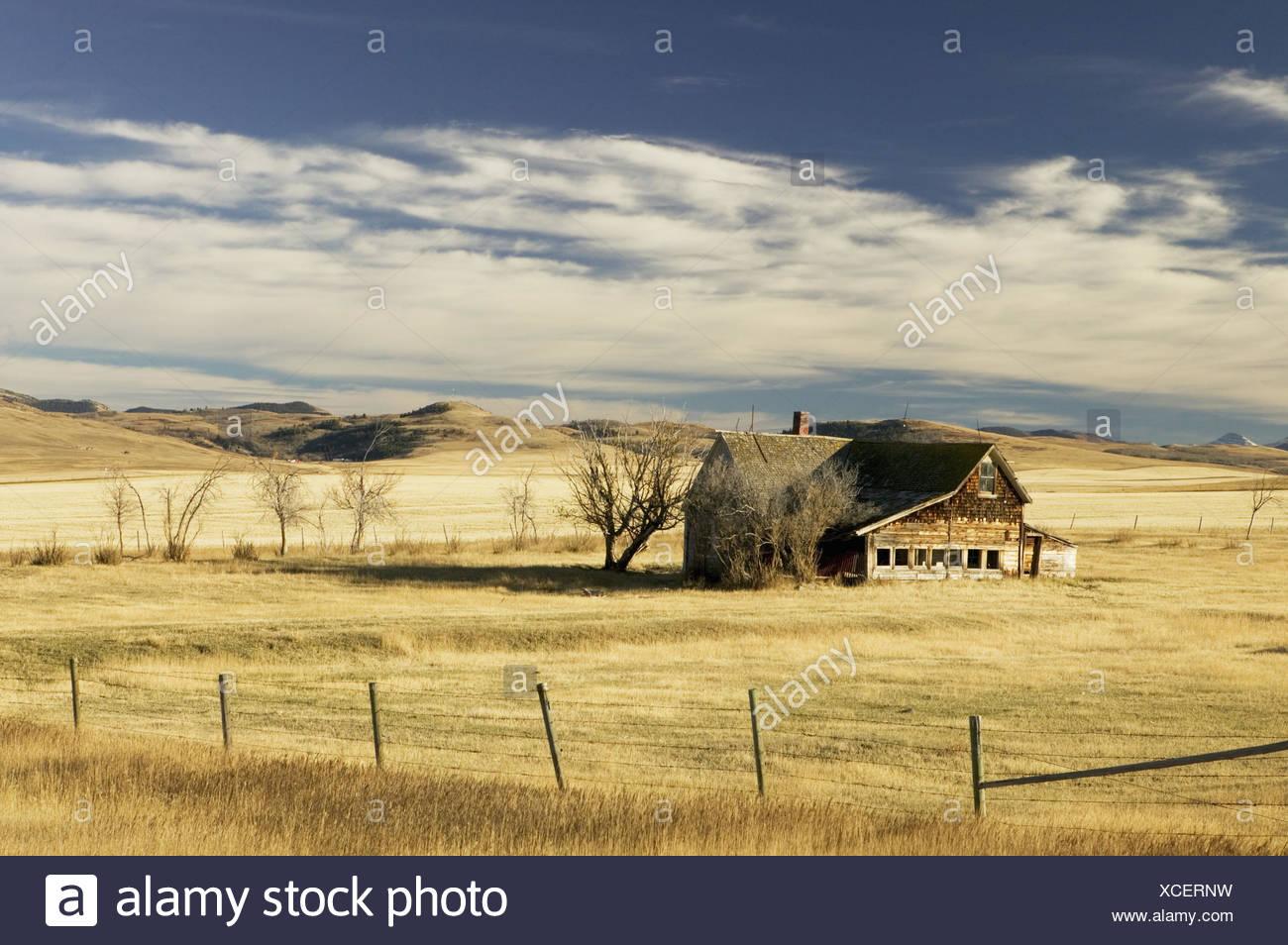Kanada, Alberta, Cowley, Ranch   Mau_Set, Nordamerika, westliche Prärieprovinz, Holzhaus, alt, Weiden, Felder, Zäune, Eingrenzungen, Hügel, Landschaft, Prärie, Graslandschaft, Bäume, Sträucher, Einsamkeit, abgelegen, Idylle - Stock Image
