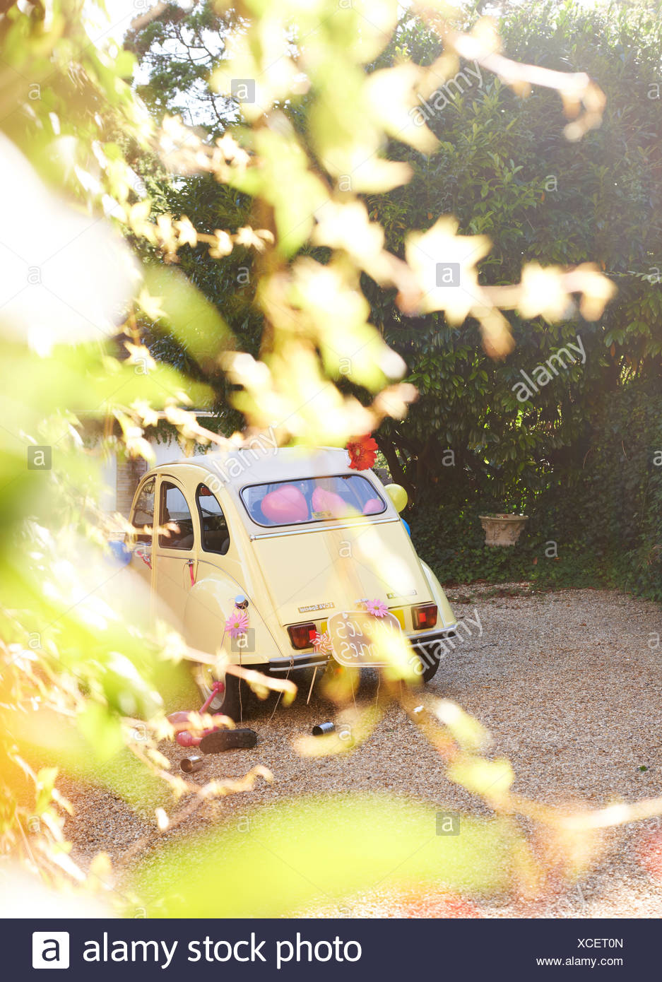 Yellow car obscured by leaves - Stock Image