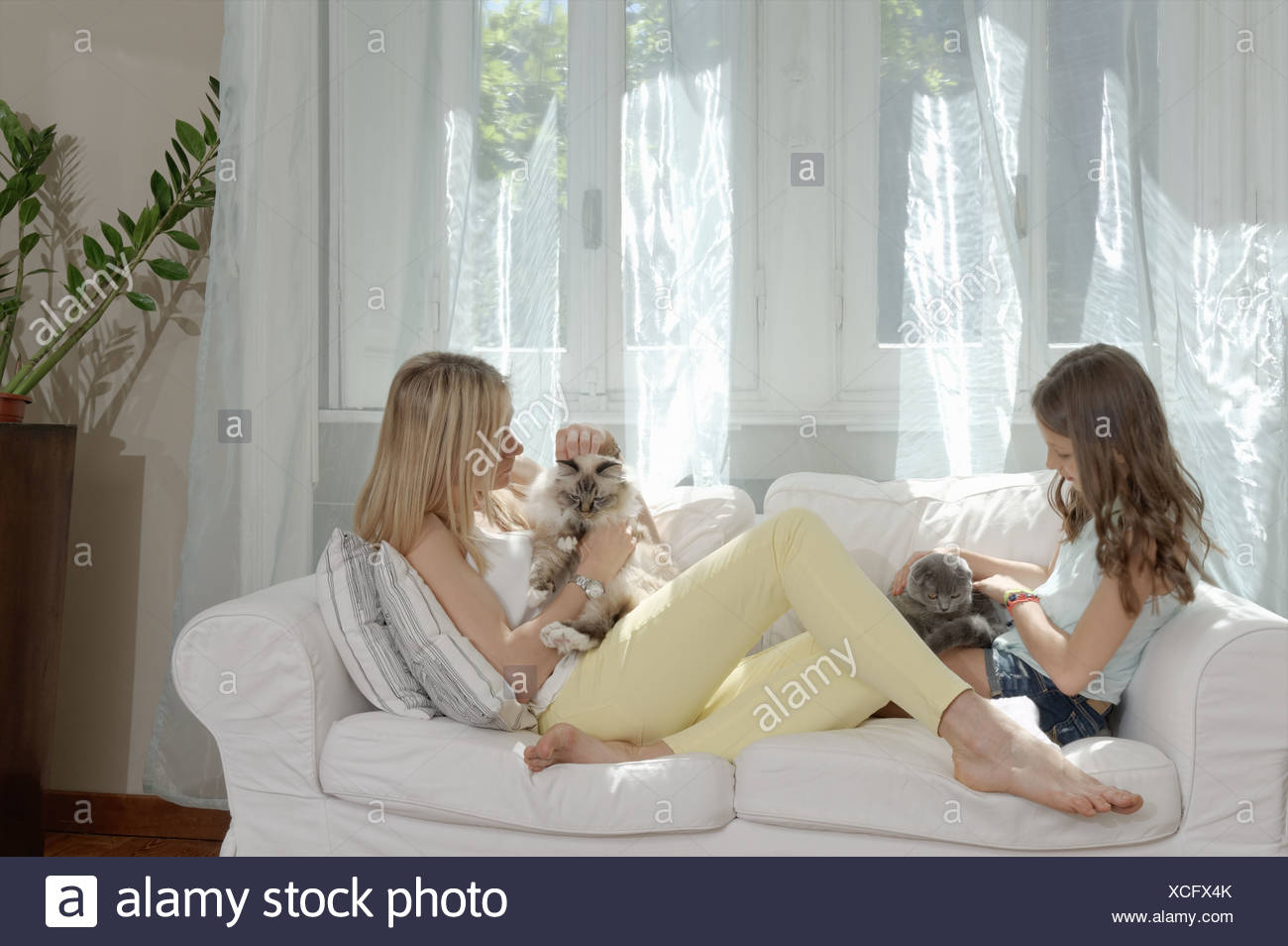 Mother and daughter on sofa petting cats - Stock Image