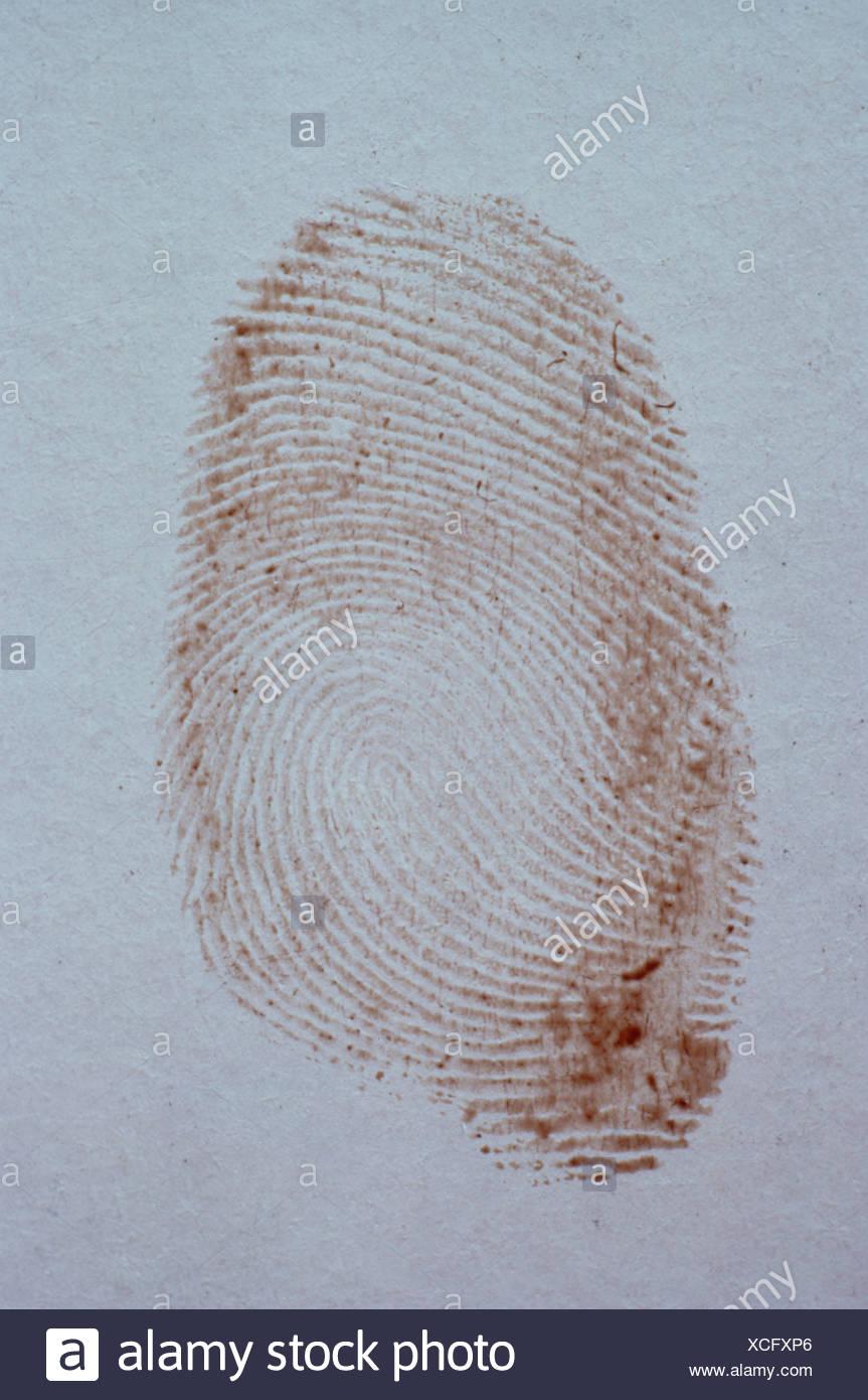 Forensic science. Crime detection. Fingerprint. - Stock Image